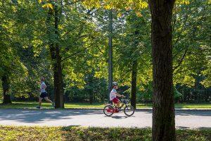 Ein Junge fährt Rad zwischen Bäumen